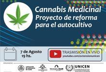 """""""Cannabis medicinal: proyecto de reforma para el autocultivo"""""""
