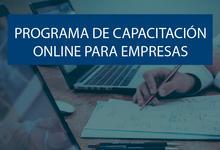 Programa de Capacitación On Line para Empresas