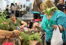 Sábado y domingo: nueva Feria de la Economía Social y Solidaria