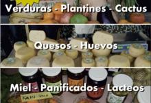 Nueva edición de Feria Verde y Artesanal en Universidad Barrial