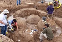 Docentes e investigadores extraen gliptodontes hallados en Bolívar