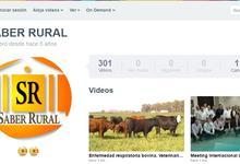 Educación continua: Veterinarias muestra propuestas de posgrado