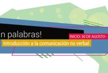 FACSO: curso de introducción a la comunicación no verbal