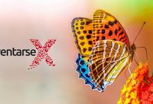 """Reinventarse"", segundo TEDx Olavarría"