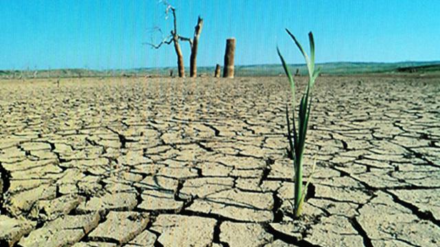 degradacin de los suelos